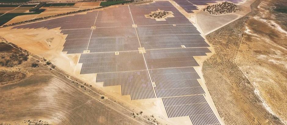 К 2050 году солнце и ветер будут вырабатывать 48% мировой электроэнергии