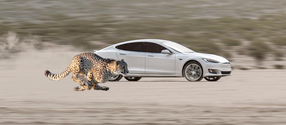 Tesla Model S получает динамику на уровне лучших суперкаров