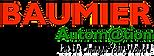 Baumier_logo_pp.png