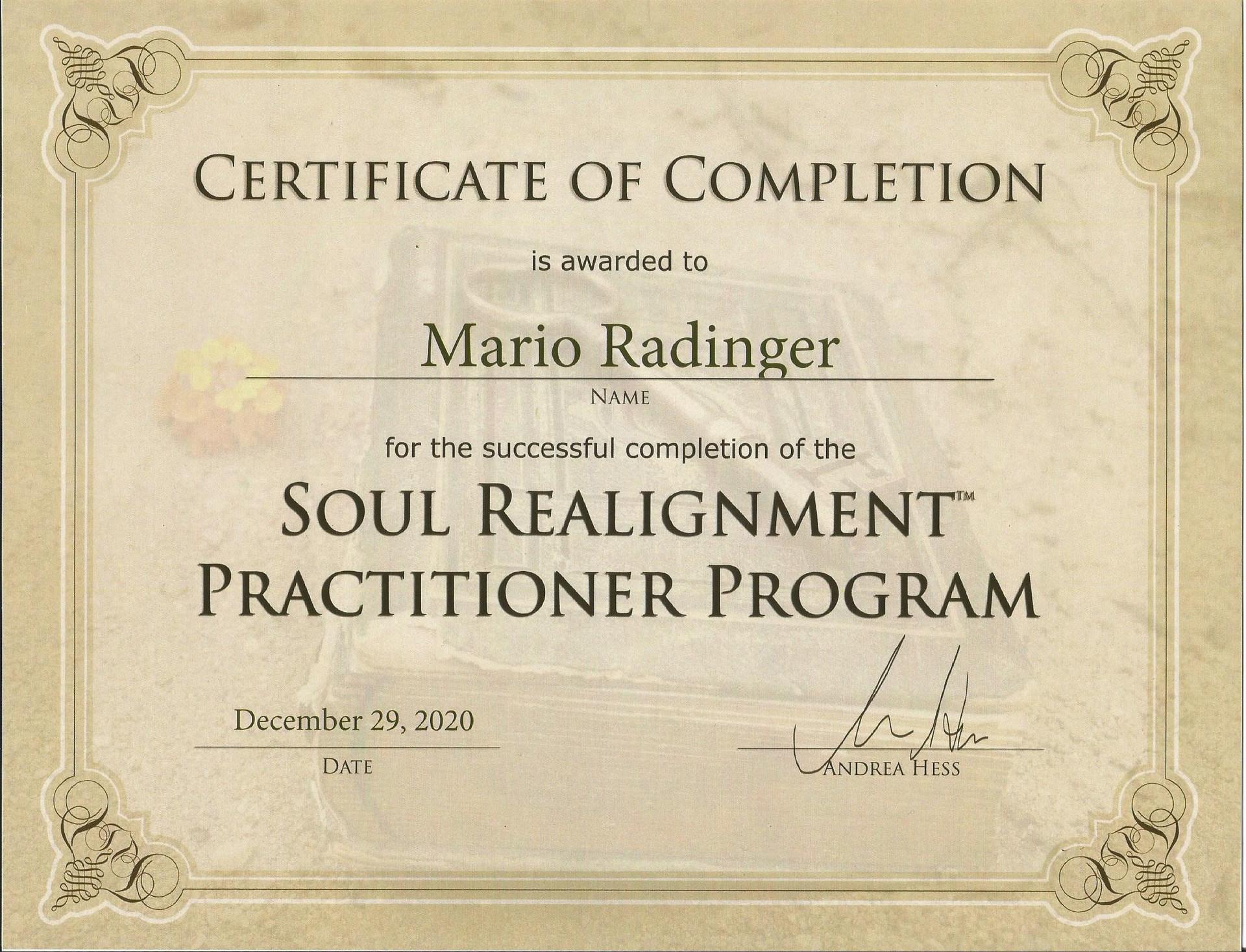 Certificate_SoulRealignment_Mario.jpg