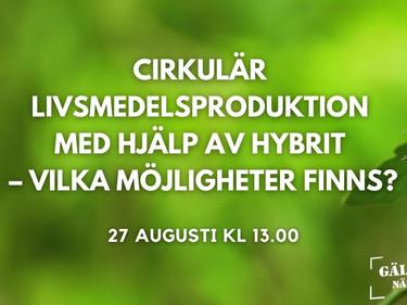Cirkulär livsmedelsproduktion med hjälp av Hybrit – Vilka möjligheter finns?