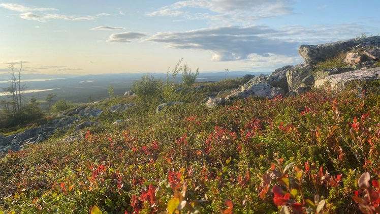 gallivare-autumn.jpg
