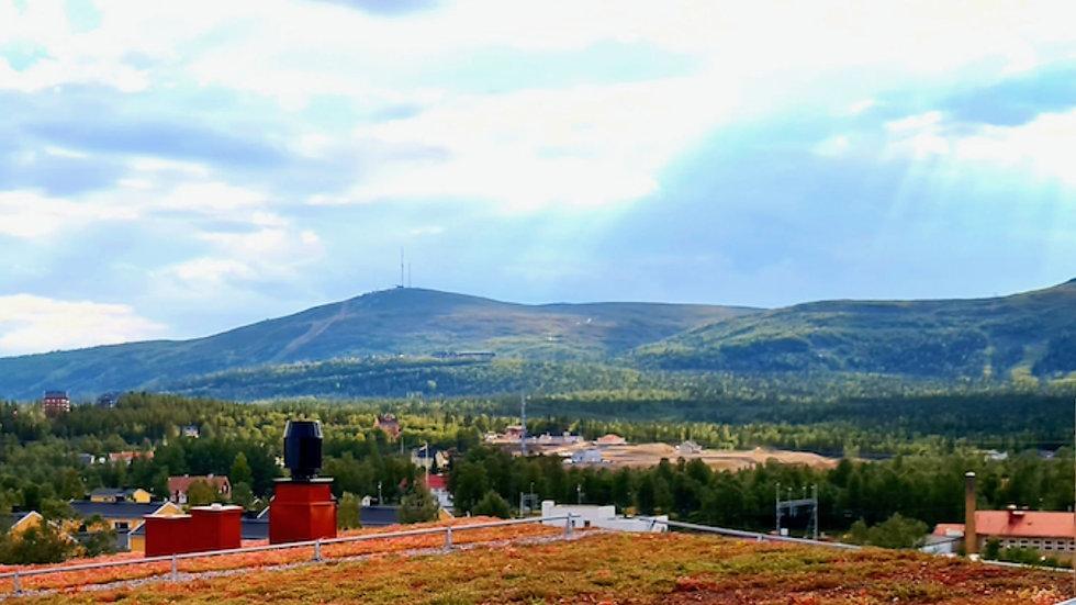 foretagsklimatet-gallivare-svenskt-narin