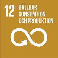 Sustainable-Development-Goals_icons-12-1