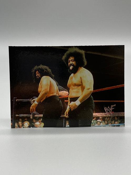 WWF Comic Images 2000 Wild Samoans #47 NM Wrestling Trading Card