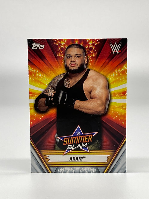 2019 Topps WWE Summerslam Akam #1