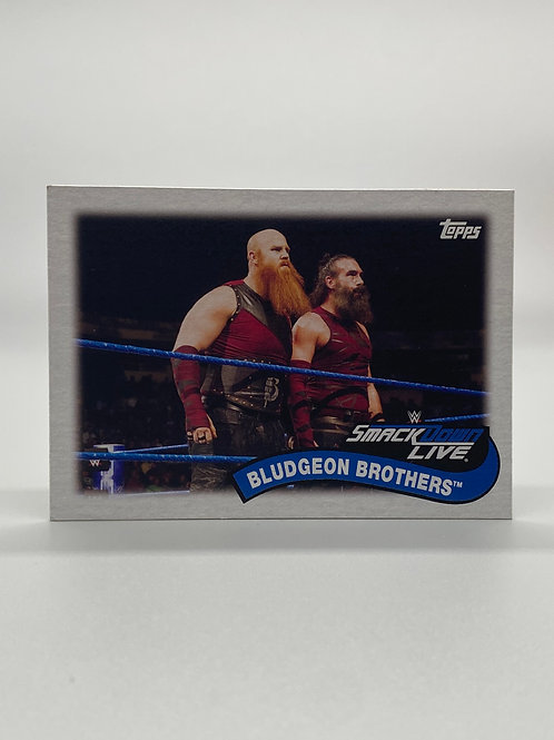 WWE Topps 2018 Tag Teams and Stables Bludgeon Brothers #TT-8