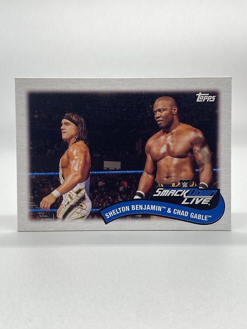 WWE Topps 2018 Tag Teams and Stables Shelton Benjamin & Chad Gables #TT-10
