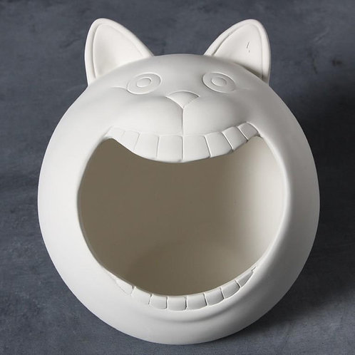 Wide Mouth Cat