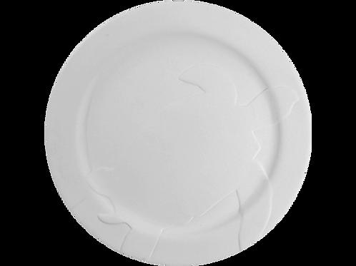 Rimmed Sea Turtle Plate