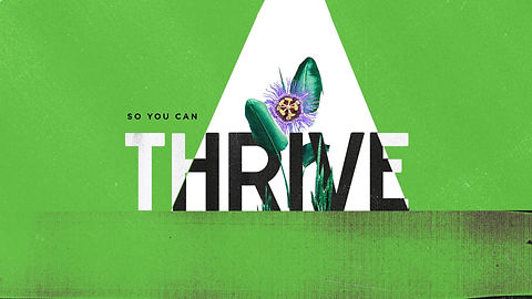 thrive green.jpeg