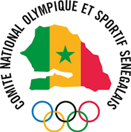 Logo CNOSS.png