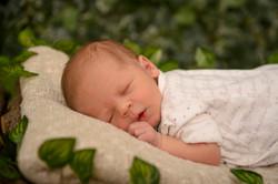újszülött fotós győr