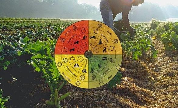 112936-conheca-tudo-sobre-a-agricultura-