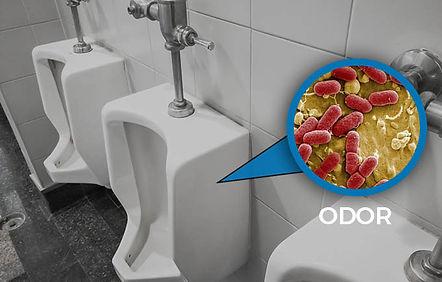 odor2.jpg