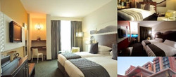 The Crowne Plaza Johannesburg - The Rose