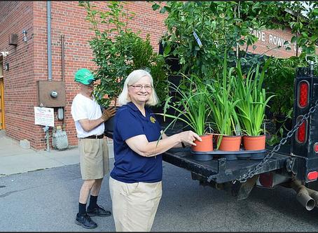 Native Plant Restoration - Rotary Row