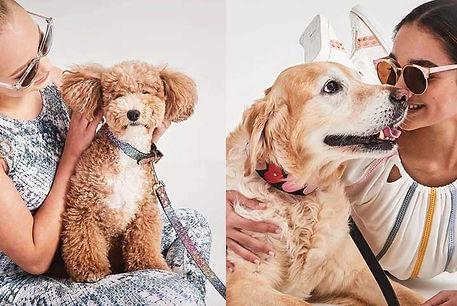 Online shopping centre Australia pavement pets fashion