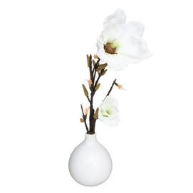 Composition Magnolia Vase.jpg