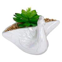 Succulente Céramique Paon.jpg