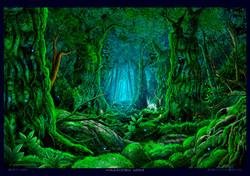 森の中で・・・2014