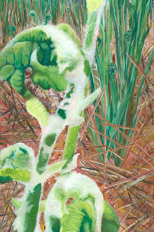 "Giclée print limited edition - ""Oh, Fiddleheads"""