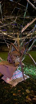 ARTTRA Light Festival Claremont (9).jpeg