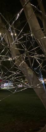 The silverweb at night