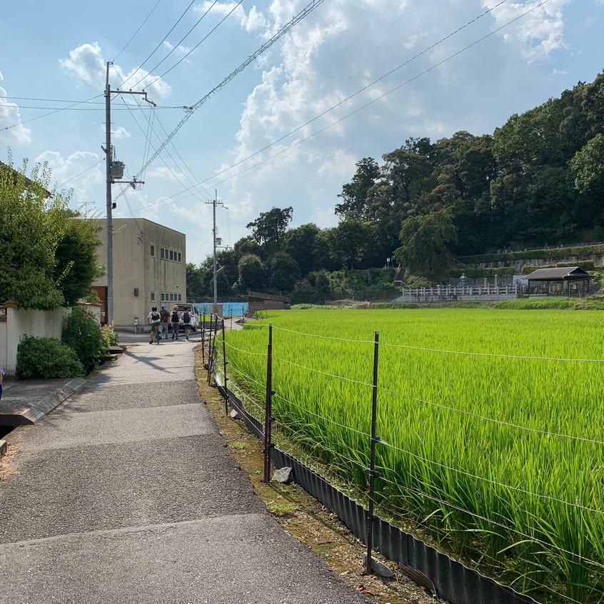 Okuribi