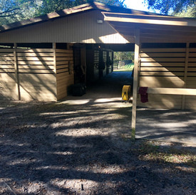 8 stall barn Kingsfield Farm Ocala