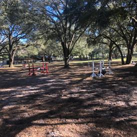 Shaded jump field Kingsfield Farm Ocala