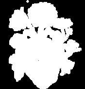 HPトップロゴ.png