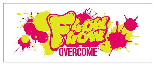 FlowFlow1stワンマン&ツアー開催記念タオル