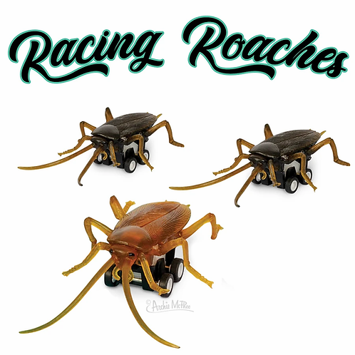 Racing Roaches