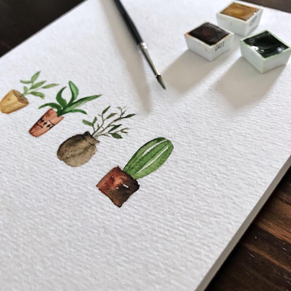 Botanische Pflanzen