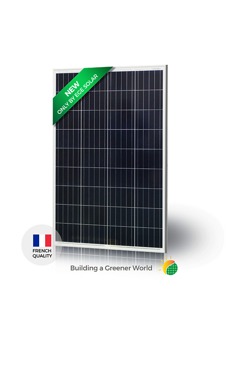 Módulo Solar EGE-110P-36 Módulo Policristalino