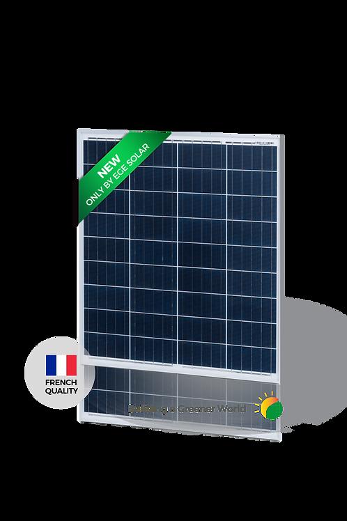 Módulo Solar EGE-90P-36 Módulo Policristalino