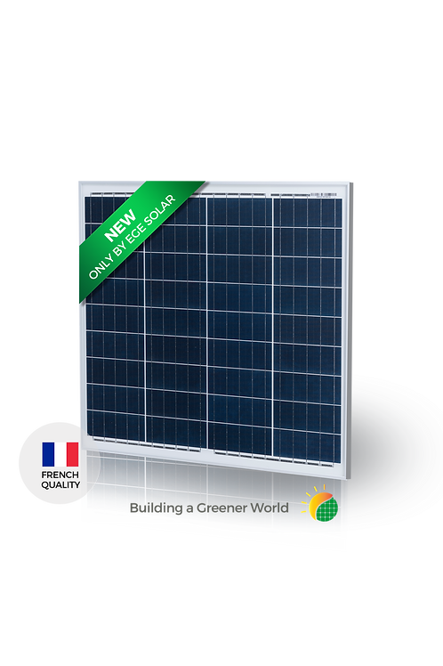 Módulo Solar EGE-50P-36 Módulo Policristalino