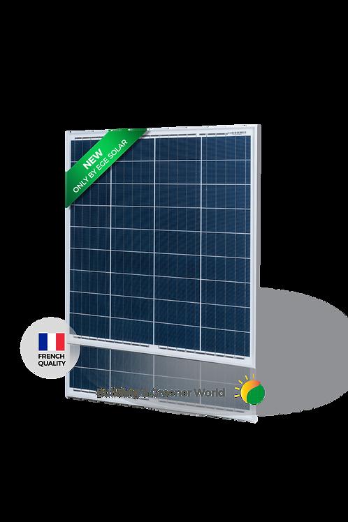Módulo Solar EGE 80P Módulo Policristalino
