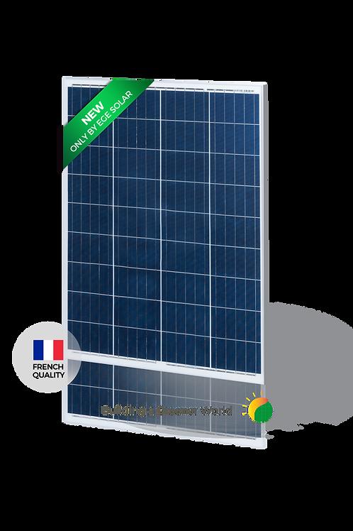 Módulo Solar EGE-100P Módulo Policristalino