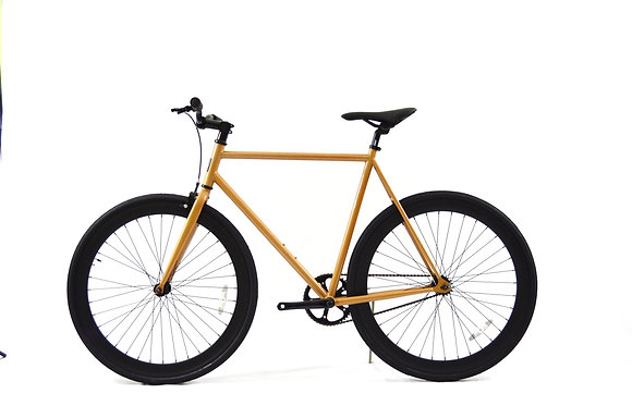 Bronze/Black Fixie
