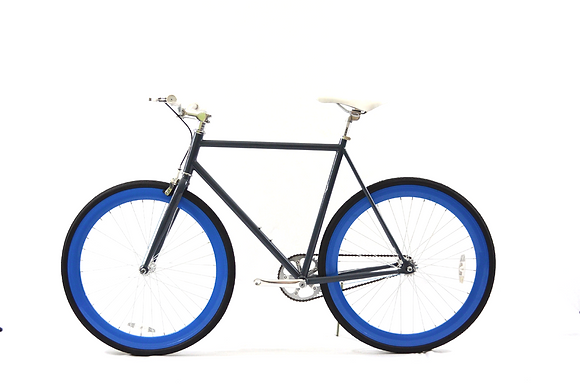 Grey/Blue Fixie