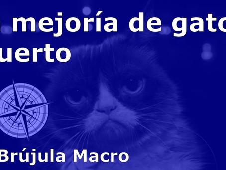 La mejoría de GATO MUERTO | La Brújula Macro