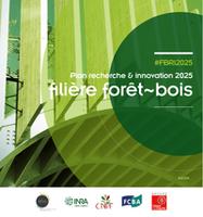 Plan recherche et innovation filière forêt-bois
