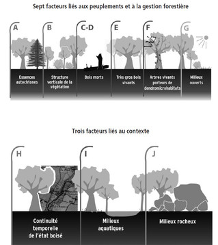 L'Indice de biodiversité potentielle (IBP) : comment l'étendre à l'ensemble des forêts méditerranéen
