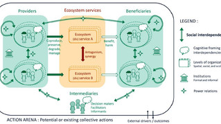 Ecosystem services, social interdependencies, and collective action: a conceptual framework