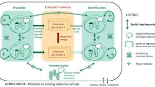 Ecosystem services, social interdependencies, and collective action: a conceptual framework