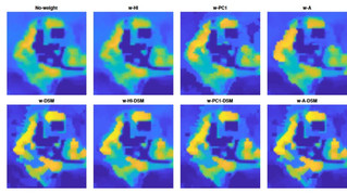 Hyperspectral Image Unmixing With LiDAR Data-Aided Spatial Regularization