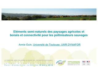 Éléments semi-naturels des paysages agricoles et boisés et connectivités pour les pollinisateurs sau