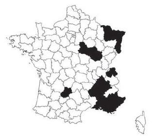 Découverte d'Anisorus quercus (Götz, 1783) dans le Lot : actualisation de sa répartition en France (